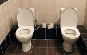 12 Crazy Toilet Facts That Will Blow Your Mind!